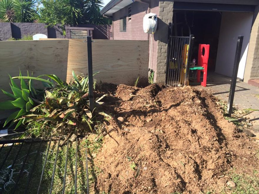 tree mulching services elevated arbor care