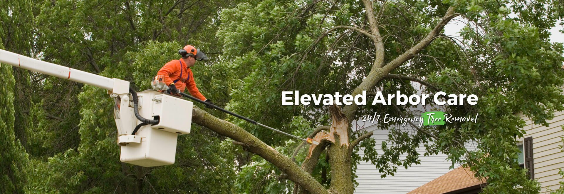 Elevated Arbor Care 24/7 Emergency Tree Removal