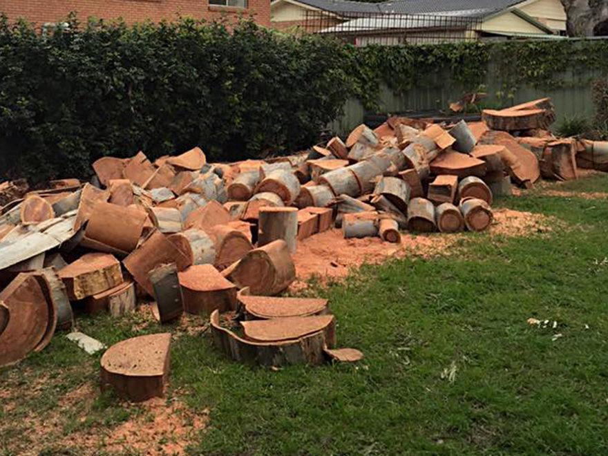 stump grinding service penrith