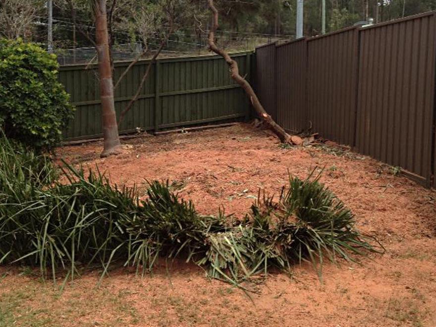 tree mulching services penrith